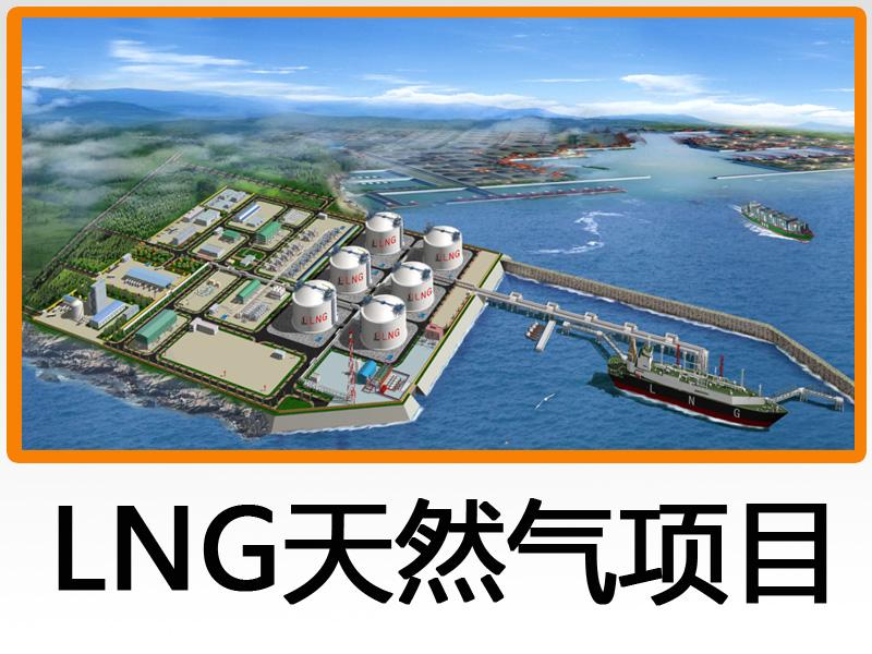 石油工業建設項目經濟評價系統軟件-LNG天然氣