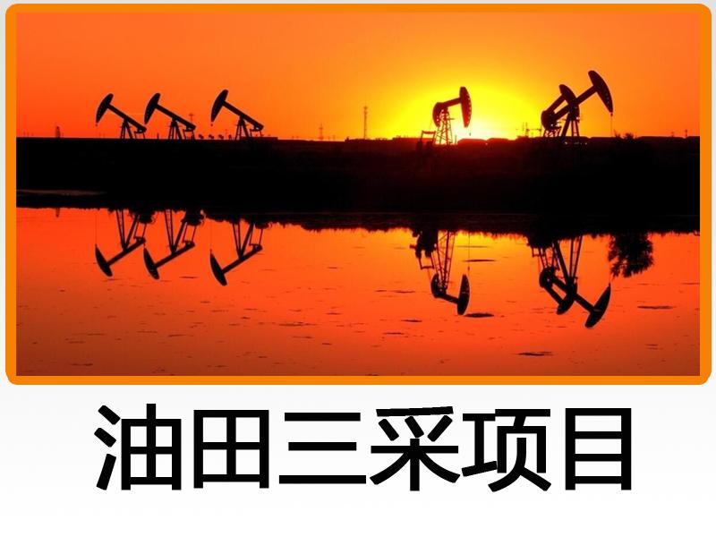 石油工業建設項目經濟評價系統軟件-油田三采項目